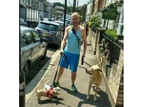 Experienced friendly dog walker Tottenham 7 sisters Finsbury Park area