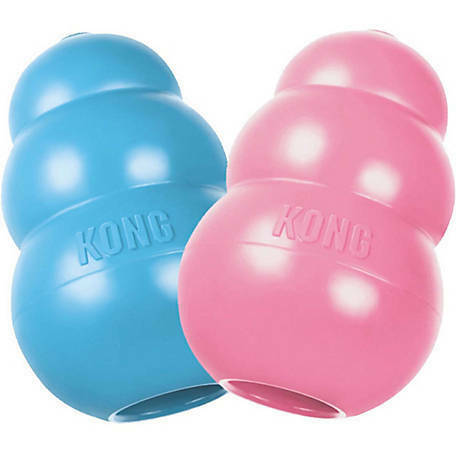 KONG Puppy Dog Toy - Small - Rubber Teething Treat Dispensing Toy - KP3