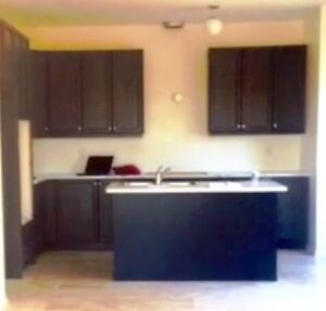Never Used - Kitchen cabinets, island, counter, sink and faucet!