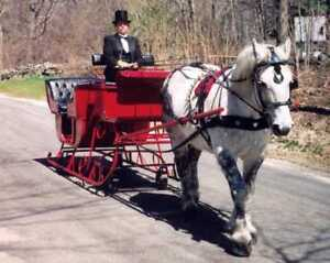 Voitures, Buggy, Wagon, Sleigh