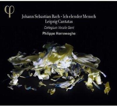 Collegium Vocale   Ich Elender Mensch  Leipzig Cantatas  New Cd