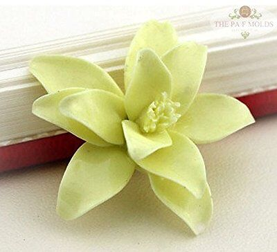 Cake Decorating Fondant Baking Mold Tool /2piece Lily FLOWER mold