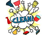 *** CLEANING SERVICES ***