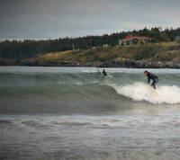 SURFING the Avalon (INFO)