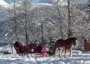 Sleigh, Carriage*Cart* Wagon