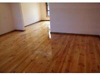 Handyman do the Flooring, carpeting ,tiles, painting, plumbing, kitchen, bathroom,garden ,fence