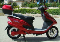 NEW   Our most economical scooter ONLY $1295