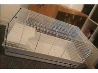big rabbit cage