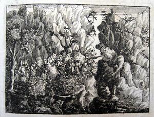 Gemsjagd-Gamsjagd-Steiermark-Styria-Stiria-Styrie-1728-Gamsen-Alpen-Gemsen-Gamse