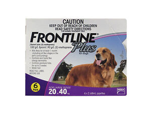 5 Reasons to Choose Frontline for Your Dog