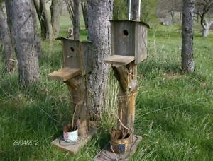reproduction birdhouses Kitchener / Waterloo Kitchener Area image 1