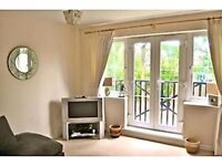 Double Room to let in luxury apartment, £600 including bills