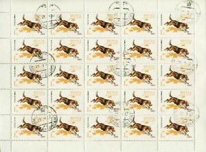 USSR Russia 1965 Mi 3020 Sheet # Animals Pies Dog Hund Tiere Pets Zwierzęta - <span itemprop='availableAtOrFrom'> Dabrowa, Polska</span> - USSR Russia 1965 Mi 3020 Sheet # Animals Pies Dog Hund Tiere Pets Zwierzęta -  Dabrowa, Polska