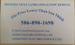 Landscaping and snow plow