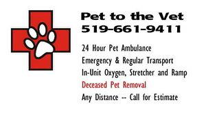 Pet Ambulance /Transportation Service