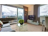 Stylish and spacious one bedroom apartment in Westminister SW1P - NO AGENT FEES