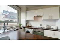 Spacious 1 bedroom apartment with Juliet balcony on 7th floor - Westminster SW1P - NO AGENT FEES