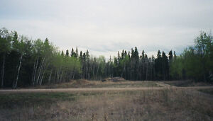 """""""Christopher Lake"""" 2.56 acre lot - $56,000 FIRM! (private sale)"""