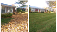 (Affordable Fall Cleanup Specials) Hamilton Area Lawn Services