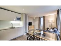 Beautiful 3B2B with Balcony river views, parking, CCTV, furnished in Merchant Square London RL176