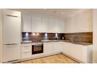2 Bed Flat to Rent in Hammersmith / Ravenscourt Park W6 - MODERN FLAT IN MANSION BLOCK