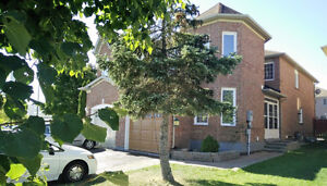 House available for Six Months from October 16th 2016
