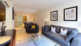High standard 2 bedrooms ground floor duplex, bright and stylish, woaw!!!
