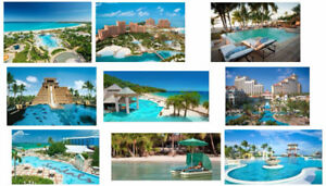 Bahamas Vacation Home Rentals couple, family or large groups