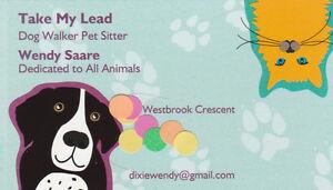 Take My Lead Dog Walking/Pet Sitting