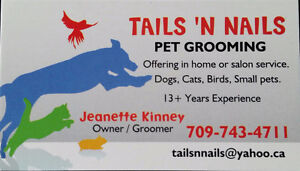 Pet Grooming in Your Home St. John's Newfoundland image 1