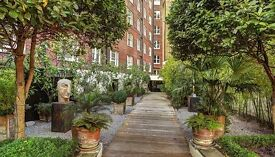 Short Term Let. Fully furnished one bedroom flat Mayfair Hill street
