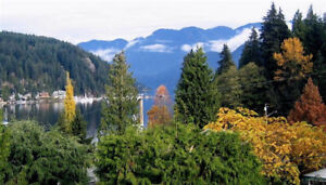 Great location Deep Cove, 1 and 2 br, furnished suites