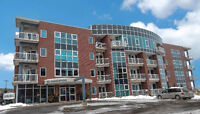 CONDO LIVING DOWNTOWN MONCTOON