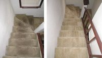 CARPET STEAM CLEANING AND DISINFECTION ALL-INCLUSIVE