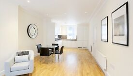Short Term Let. Huge Fully furnished one bedroom flat in chiswick