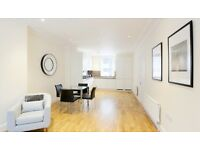 Huge Fully furnished one bedroom flat in chiswick