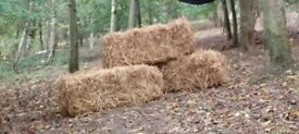 3 Straw Bales FOR SALE