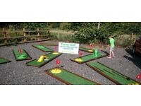 Crazy GOLF business for SALE