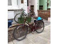 Vintage woman red bike