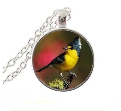 """BIRD YELLOW FINCH  pendant Sterling Silver 20"""" necklace FREE women mom $10 GIFT"""