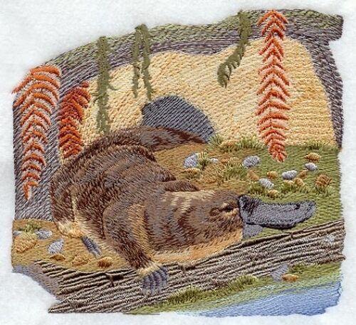 Embroidered Sweatshirt - Duck-Billed Platypus M1943