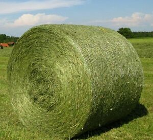 Hay Round bales wanted