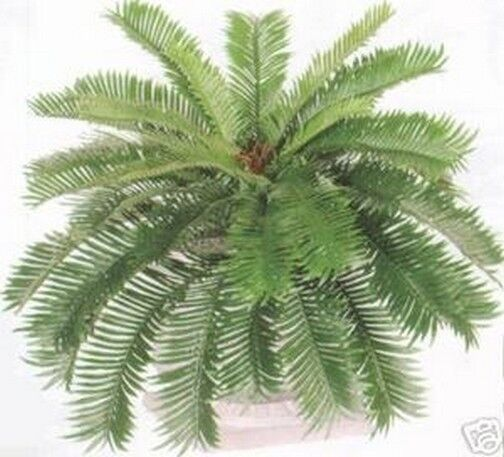 "30"" Cycas Palm Artificial Tree Silk Plants Flowers and Plants"