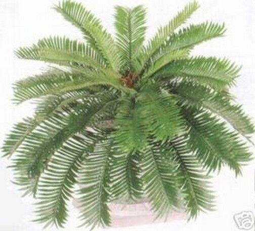 Sago Palm Bush 34 Spread Artificial Plant Silk Date Fern Phoenix Tree Boston