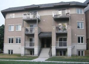 Beautiful Multi-Level Upper Unit Terrace Home For Rent