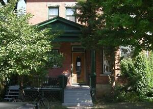 Bright & Clean Basement Bachelor in the Glebe!