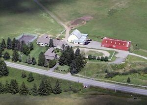 NEW PRICE! 33.715 Acre Horse Farm 25 MIN. TO HALIFAX,, NS