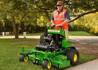 Fall Clean Up/Tree and Shrub Removal/Lawn & Garden Maintenance