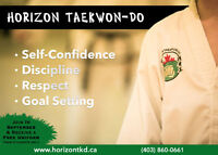 Horizon Taekwon-Do Airdrie (Martial Art)