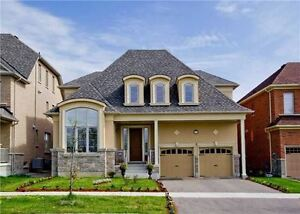Beautiful Detached Home With Back To Forest! Over 3400 Sf!